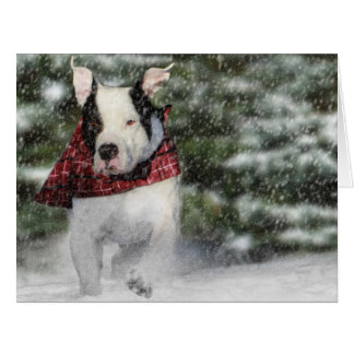 Bulldog Rescue Pup Dashing through the Snow Card