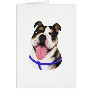 Bulldog Special Order Greeting Cards