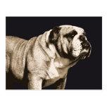 Bulldog Spirit Postcard