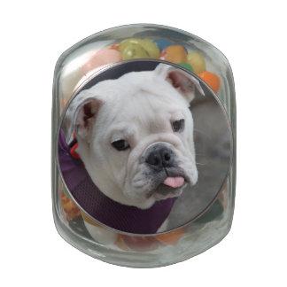Bulldog Taunt Glass Jars