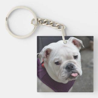 Bulldog Taunt Single-Sided Square Acrylic Keychain