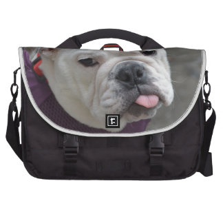 Bulldog Taunt Commuter Bags
