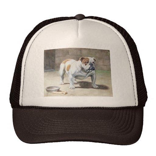 Bulldog Vinatage Hat