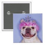 Bulldog wearing tiara button