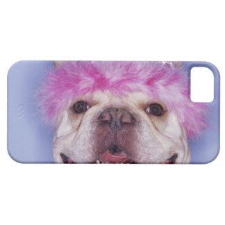 Bulldog wearing tiara iPhone 5 covers