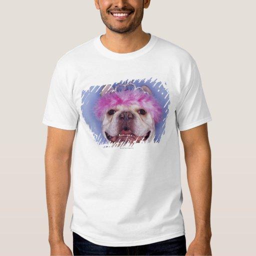 Bulldog wearing tiara t shirt