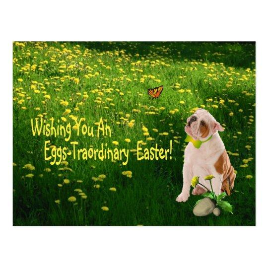 Bulldog Wishing You An Eggs - Traordinary Easter Postcard