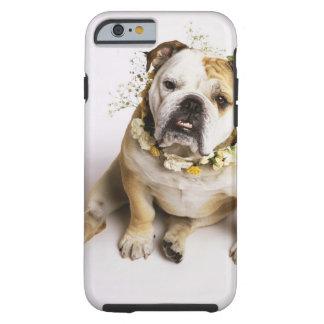 Bulldog with flower collar tough iPhone 6 case