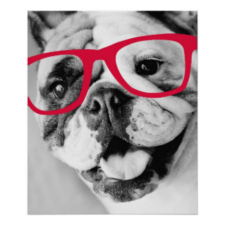 Bulldog With Glasses Print