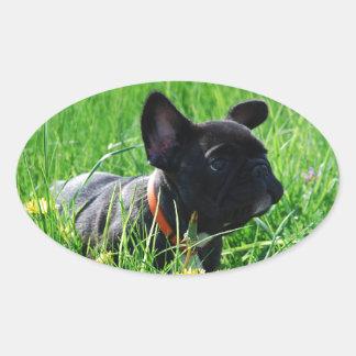 Bulldoges franceses bordadores pegatina ovalada