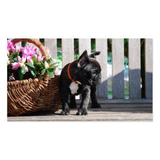 Bulldoges franceses tarjeta de presentación tarjetas de visita