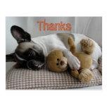 "Bulldoges franceses tarjeta postal ""Thanks """