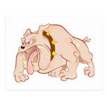 Bulldogge bulldog postcard