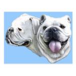 Bulldogs Post Card