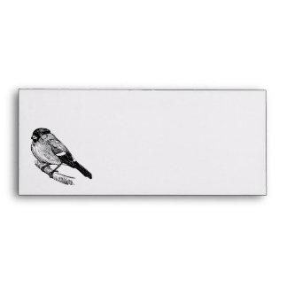 Bullfinch Bird Drawing Envelope