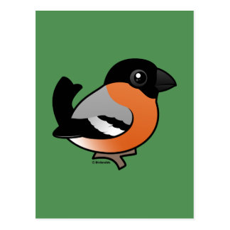 Bullfinch eurasiático postales