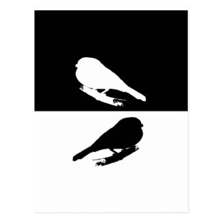 Bullfinch Postcard