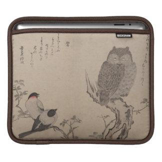 Bullfinch y búho de cuernos - Kitagawa Utamaro Manga De iPad