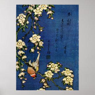 Bullfinch y cereza de inclinación póster