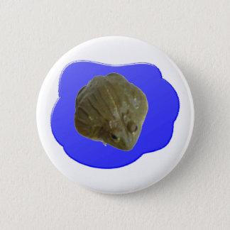 Bullfrog Button