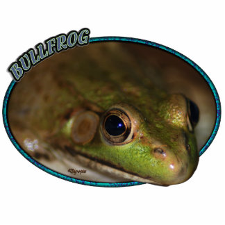 Bullfrog in Oval Photo Sculpture Ornament