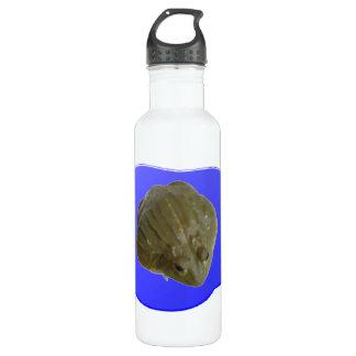 Bullfrog in Pond Water Bottle