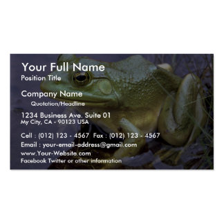 Bullfrog, Lake St. Peter, Ontario, Canada Double-Sided Standard Business Cards (Pack Of 100)
