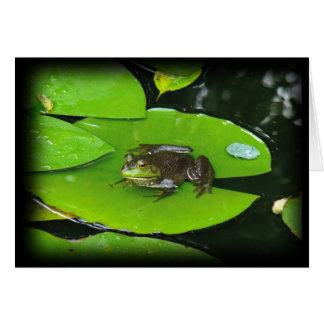 Bullfrog on Lilypads Greeting Card