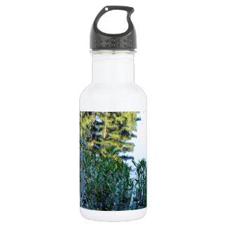Bullfrog Pond Reflection Stainless Steel Water Bottle