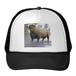 Bullish Trucker Hat