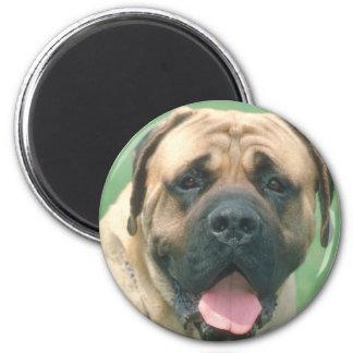 Bullmastiff 2 Inch Round Magnet