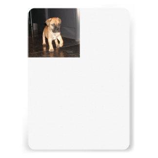 bullmastiff 3 puppy personalized invitations