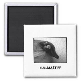Bullmastiff Ear 2 2 Inch Square Magnet