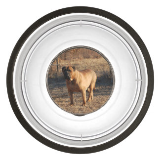 bullmastiff full.png bowl