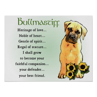 Bullmastiff Gifts Poster