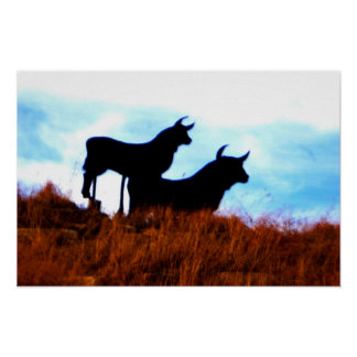 Bulls and Bulls Poster