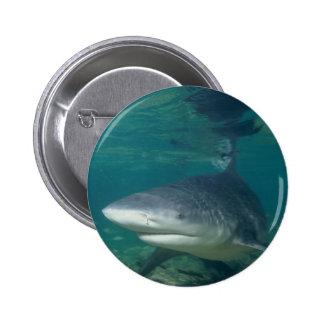 Bullshark Button