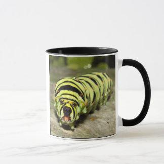 Bullterpillar mug