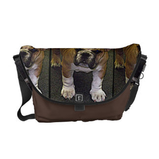 Bully! Adorable English Bulldog Puppy Messenger Bag
