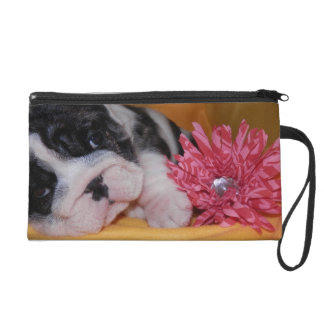 Bully Love English Bulldog Wristlet