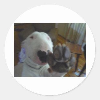 bully paw classic round sticker