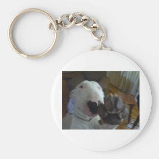 bully paw keychain