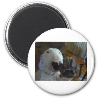 bully paw fridge magnet