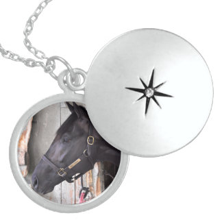 Bully Proof by Bellamy Road-Flaming Slew Locket Necklace