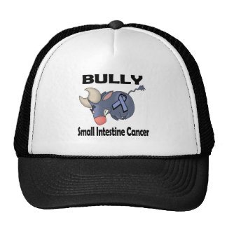 BULLy Small Intestine Cancer Mesh Hats