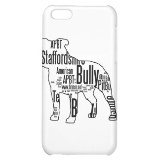Bully Words Case For iPhone 5C