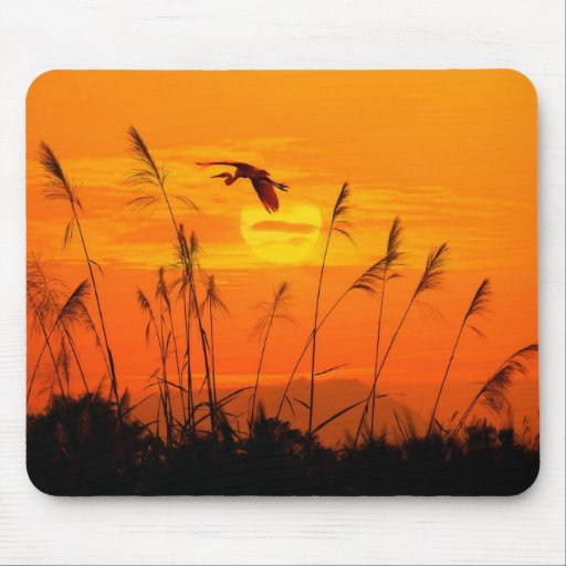 Bulrushes against sunlight over sky background mouse pads