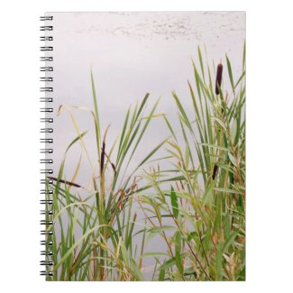 Bulrushes By Water Notebook