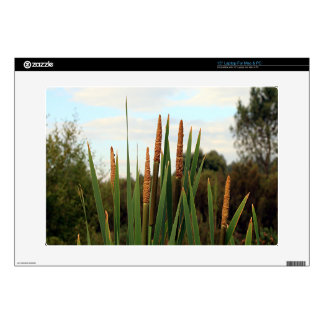 """Bulrushes, early morning, Spain Decals For 15"""" Laptops"""