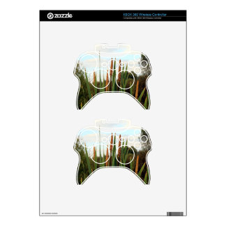 Bulrushes, early morning, Spain Xbox 360 Controller Skins
